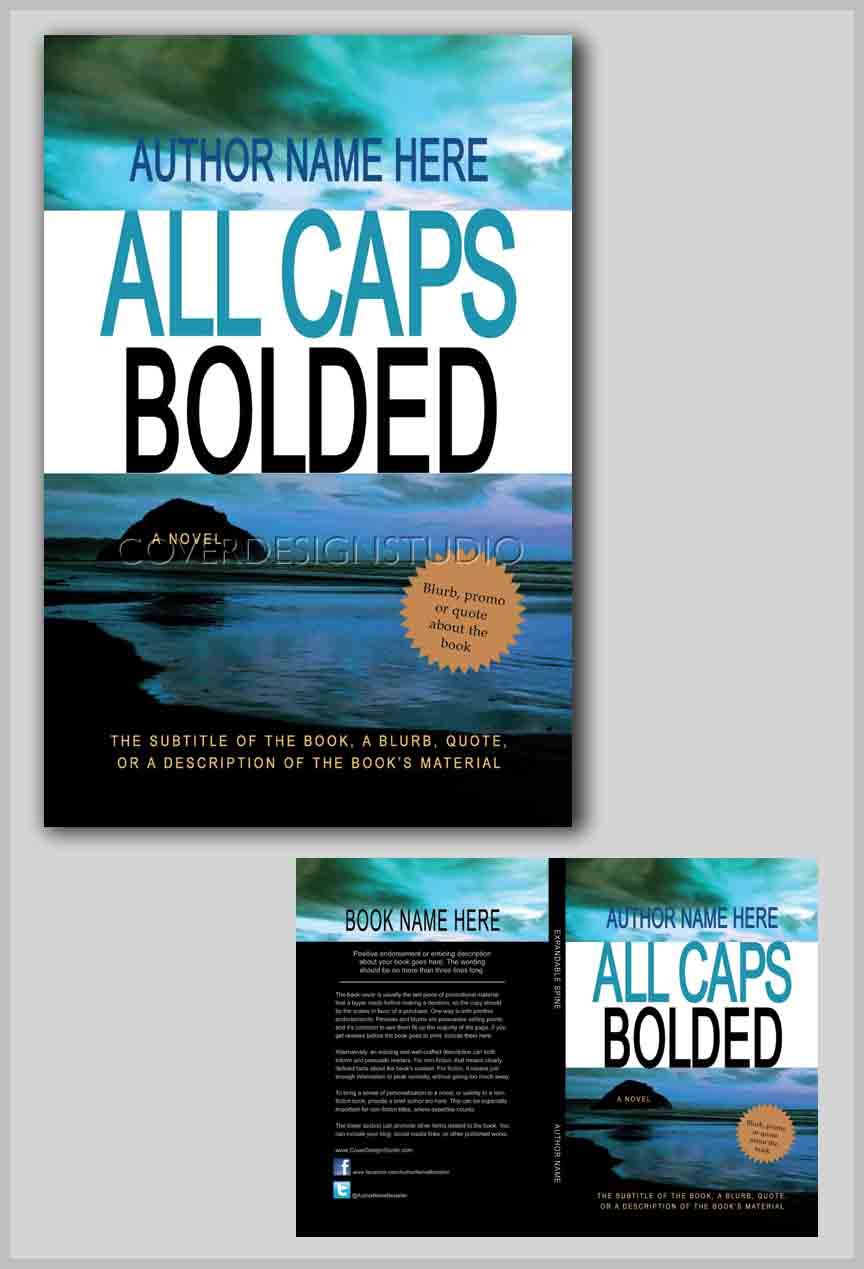 Blue Cover Cookbook ~ Dark reflections book cover design studio